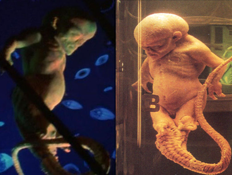 Citazioni aliene: La casa dei 1000 corpi (2003)
